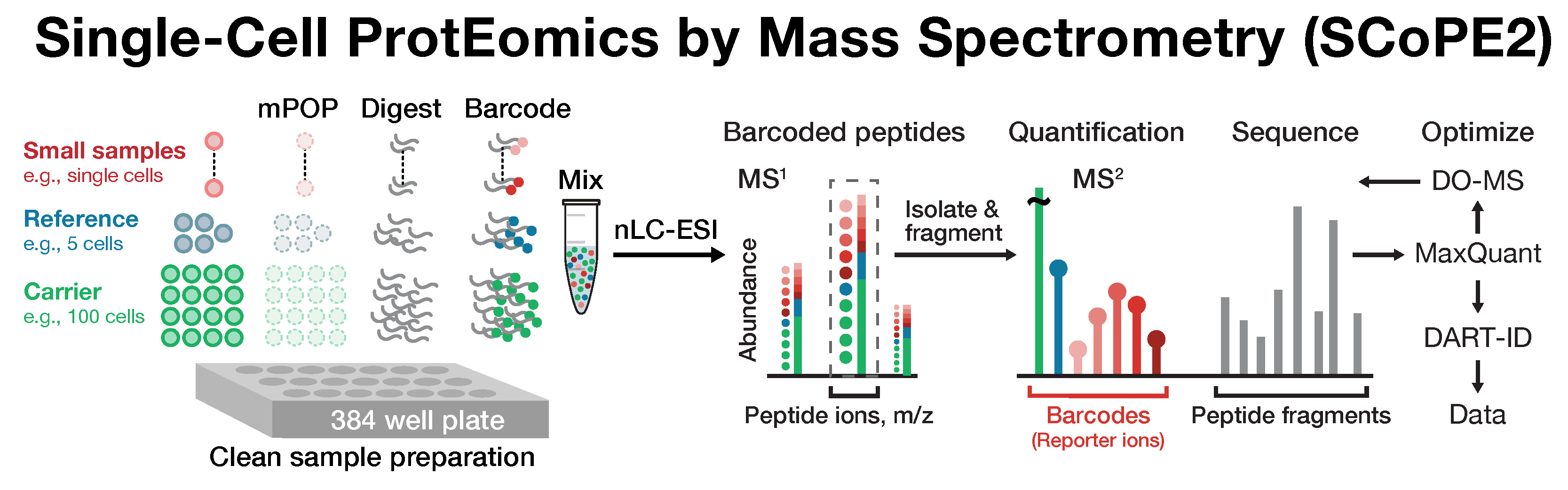 Single-cell proteomics by Mass-spec (SCoPE-MS)